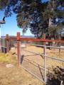 3400 Black Bart Trail - Photo 74