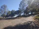 12410 Cerrito Drive - Photo 6