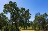 5350 Oak Meadow Drive - Photo 2