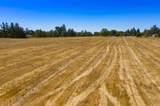 5350 Oak Meadow Drive - Photo 31