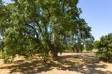 5350 Oak Meadow Drive - Photo 4