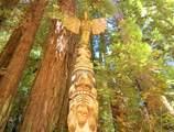 139 Redwood Avenue - Photo 2