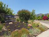 509 Oak Vista Court - Photo 44