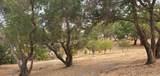 1616 Redwood Hill Road - Photo 11