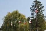 172 American Flag Way - Photo 27