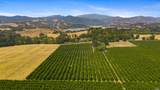 9160 California 29 - Photo 11