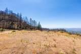 5145 Pine Flat Road - Photo 4