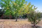 5134 Fig Tree Lane - Photo 47