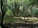 9 Meadow View Lane - Photo 6