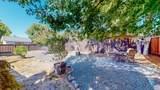 4913 Stonehedge Drive - Photo 53