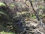 3062 Mix Canyon Road - Photo 15