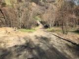 3062 Mix Canyon Road - Photo 16