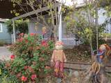 1506 Royal Oak Drive - Photo 1