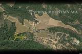 2900 Spring Mountain Road - Photo 5