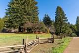 12801 Big Meadow Road - Photo 31