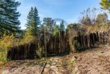 12801 Big Meadow Road - Photo 33