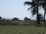 43601 Sea Cypress Drive - Photo 1