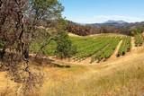 6923 Plum Ranch - Photo 17