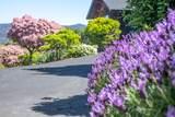 5550 Plum Ranch Road - Photo 47