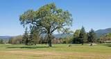 149 Oak Island Drive - Photo 37