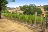 1325 Loma Vista Drive - Photo 41