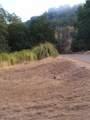 3400 Black Bart Trail - Photo 3