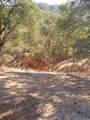3400 Black Bart Trail - Photo 56