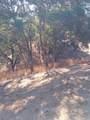 3400 Black Bart Trail - Photo 57