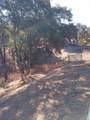 3400 Black Bart Trail - Photo 58