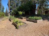 1425 Howell Mountain Road - Photo 20