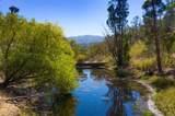 5051 Warm Springs Road - Photo 65