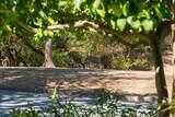 21 Pacheco Creek Drive - Photo 29