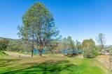 1272 Steele Canyon Road - Photo 11