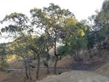 1501 Lucas Valley Road - Photo 10