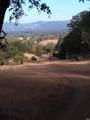 3400 Black Bart Trail - Photo 12
