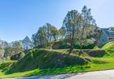 1272 Steele Canyon Road - Photo 5
