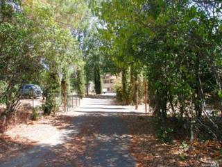 15275 Arnold Drive, Glen Ellen, CA 95442 (#21521212) :: RE/MAX PROs