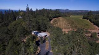 515 Viewridge Drive, Angwin, CA 94508 (#21623637) :: Heritage Sotheby's International Realty