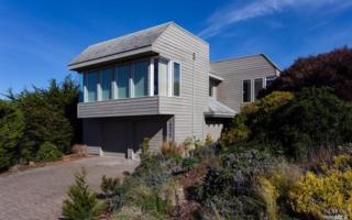 20920 Grebe Court, Bodega Bay, CA 94923 (#21701267) :: RE/MAX PROs