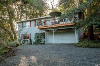 1370 London Ranch Road, Glen Ellen, CA 95442 (#21701446) :: RE/MAX PROs