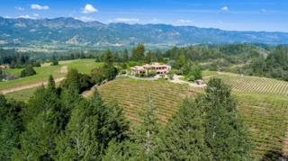 5800 Petrified Forest Road, Calistoga, CA 94515 (#21703704) :: Heritage Sotheby's International Realty