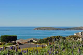 924 Dowitcher Court, Bodega Bay, CA 94923 (#21703993) :: RE/MAX PROs