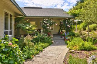 3750 Deer Meadow Lane, Occidental, CA 95465 (#21704364) :: RE/MAX PROs