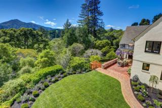 10 Hotaling Court, Kentfield, CA 94904 (#21704800) :: Heritage Sotheby's International Realty