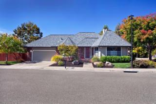 313 Greens Drive, Healdsburg, CA 95448 (#21704954) :: RE/MAX PROs