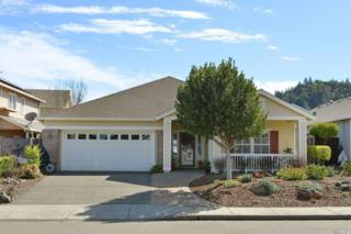 111 Douglas Fir Circle, Cloverdale, CA 95425 (#21705036) :: RE/MAX PROs