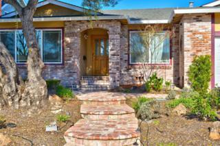 1637 E Madison Street, Petaluma, CA 94954 (#21705072) :: Heritage Sotheby's International Realty