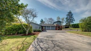 7467 Applewood Lane, Sebastopol, CA 95472 (#21705147) :: RE/MAX PROs