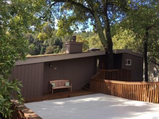 37 Los Robles Drive, San Rafael, CA 94901 (#21705170) :: RE/MAX PROs