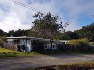 2975 Driftwood Road, Bodega Bay, CA 94923 (#21705358) :: RE/MAX PROs